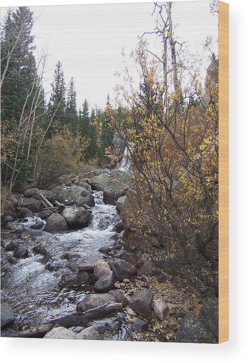 Landscape Wood Print featuring the photograph Waterfall by Lisa Gabrius