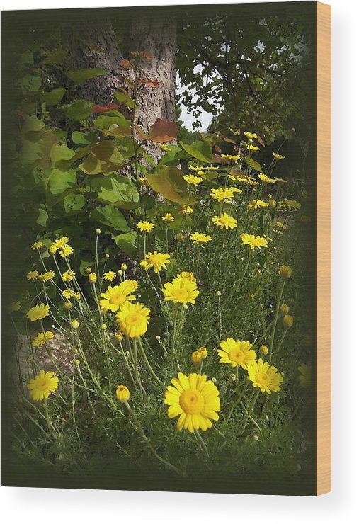 Flower Wood Print featuring the photograph Wild Flowers by Jim Darnall