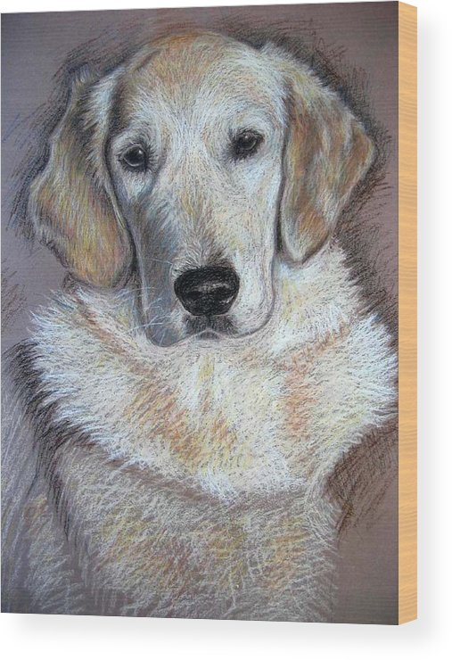 Dog Wood Print featuring the pastel Young Golden Retriever by Nicole Zeug