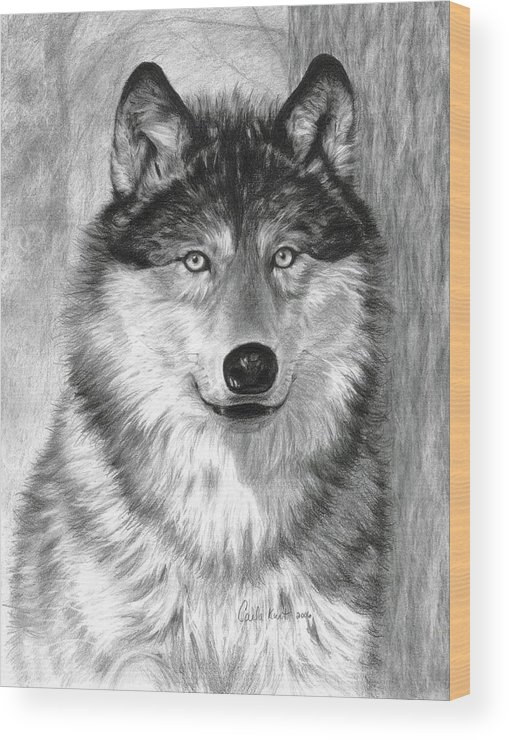 Wolf Wood Print featuring the drawing Alpha by Carla Kurt