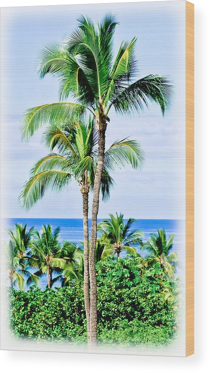 Tropical Palm Trees Wood Print featuring the photograph Tropical Palm Trees In Hawaii by Athena Mckinzie
