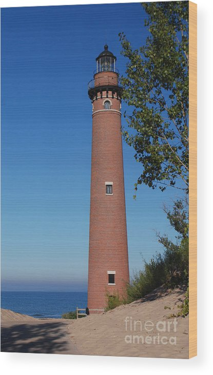 Little Sable Point Lighthouse Wood Print featuring the photograph Little Sable Point Lighthouse by Grace Grogan
