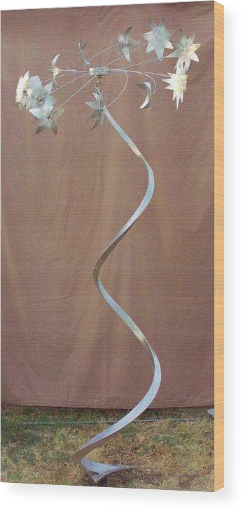 Original Sculpture Wood Print featuring the sculpture Spiral Universe by Daniel Haynie
