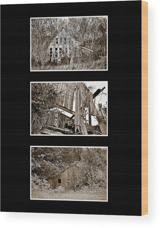3 Barns Vertical Wood Print featuring the photograph 3 Barns Vertical by Greg Jackson