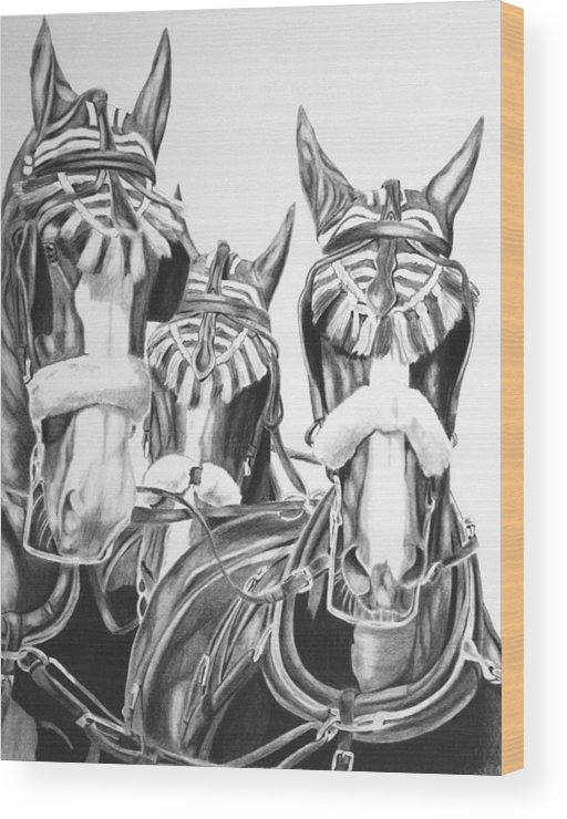 Horse Wood Print featuring the drawing Fancy Turnout by Elizabeth Llewellyn