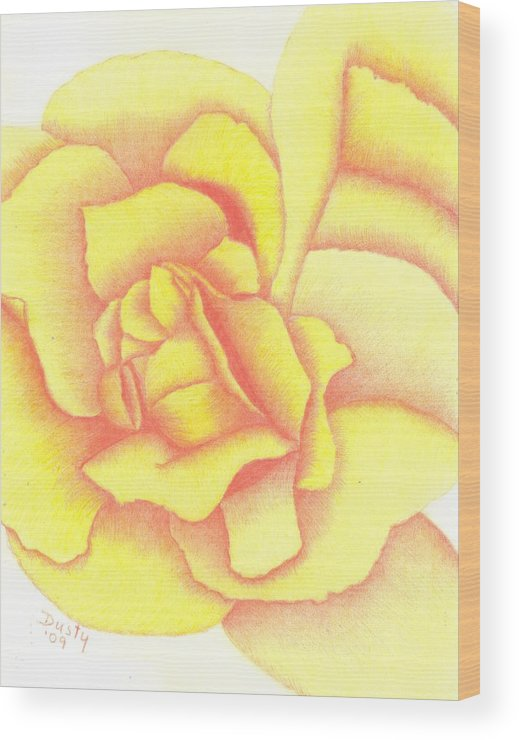 Rose Wood Print featuring the drawing Flaming Yellow Rose by Dusty Reed