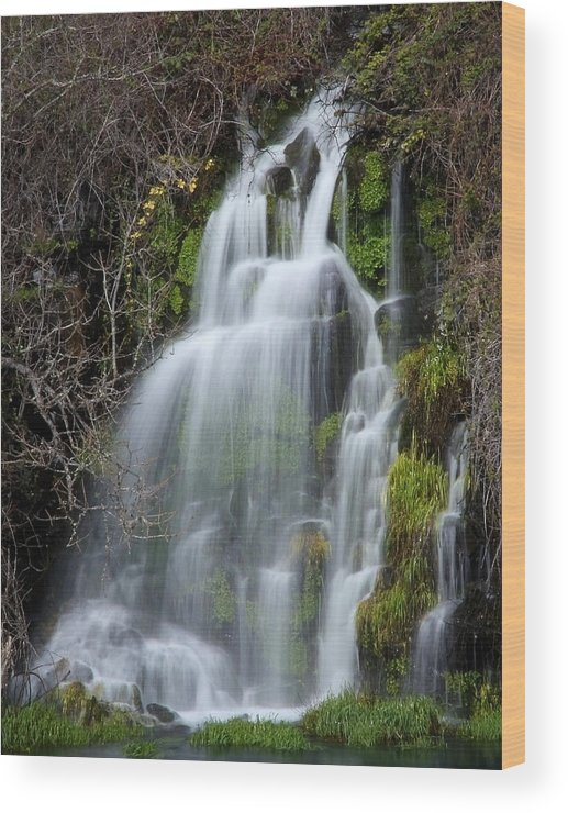 Waterfall Wood Print featuring the photograph Tranquil Waterfall by Athena Mckinzie