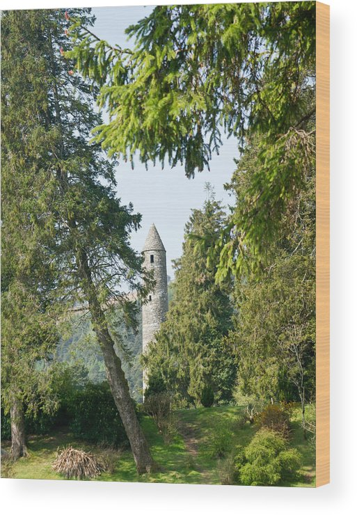 Round Wood Print featuring the photograph Glendalaugh Round Tower 12 by Douglas Barnett