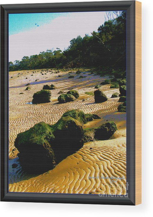Beach Wood Print featuring the photograph Waste Land by James Dierker