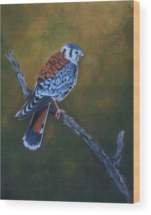 Kestrel Wood Print featuring the painting Kestrel by Joan Barnard