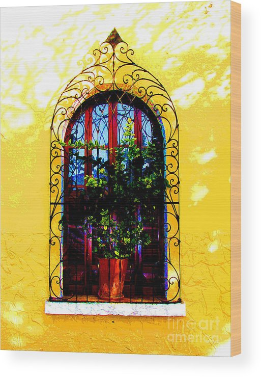 Darian Day Wood Print featuring the photograph Arched Window By Darian Day by Mexicolors Art Photography