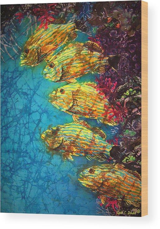 Bluestriped Grunts Wood Print featuring the painting Bluestriped Grunts by Sue Duda