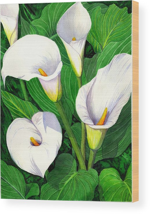 Lily Wood Print featuring the painting Calla Lilies by Catherine G McElroy