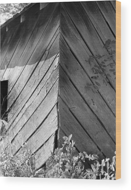 Wood Wood Print featuring the photograph Diagonals by Curtis J Neeley Jr