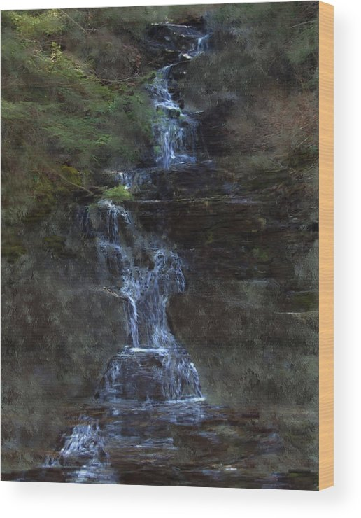 Wood Print featuring the photograph Falls At 6 Mile Creek Ithaca N.y. by David Lane