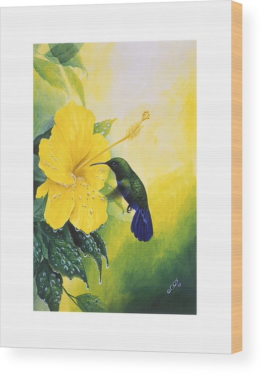 Chris Cox Wood Print featuring the painting Green-throated Carib Hummingbird And Yellow Hibiscus by Christopher Cox