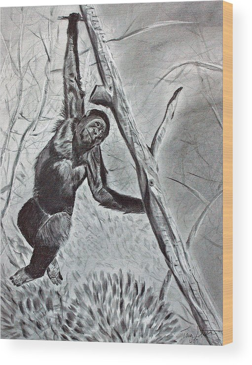 Monkey Wood Print featuring the drawing Hanging Around by Tina Storey