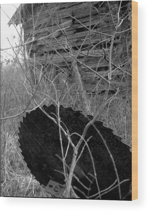 Ansel Adams Wood Print featuring the photograph House-saw-old by Curtis J Neeley Jr