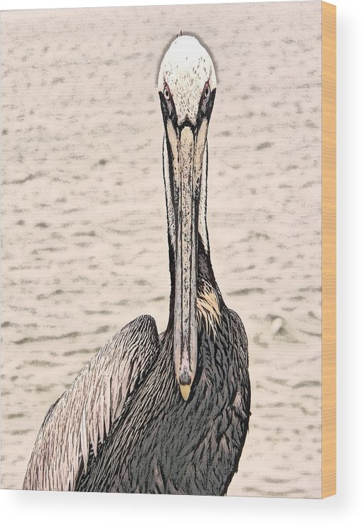 Brown Pelican Wood Print featuring the photograph I See You Too by Steven Sparks