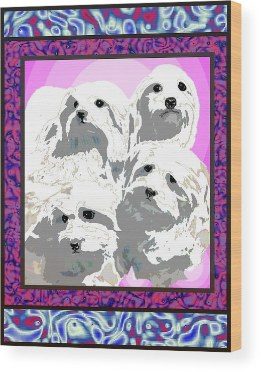 Maltese Group Wood Print featuring the digital art Maltese Group by Kathleen Sepulveda