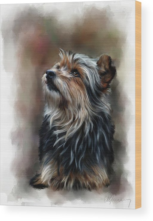 Pet Portraits Wood Print featuring the mixed media Pet Dog Portrait by Michael Greenaway