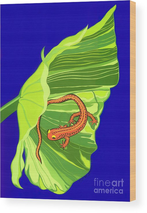Nature Wood Print featuring the drawing Salamander by Lucyna A M Green