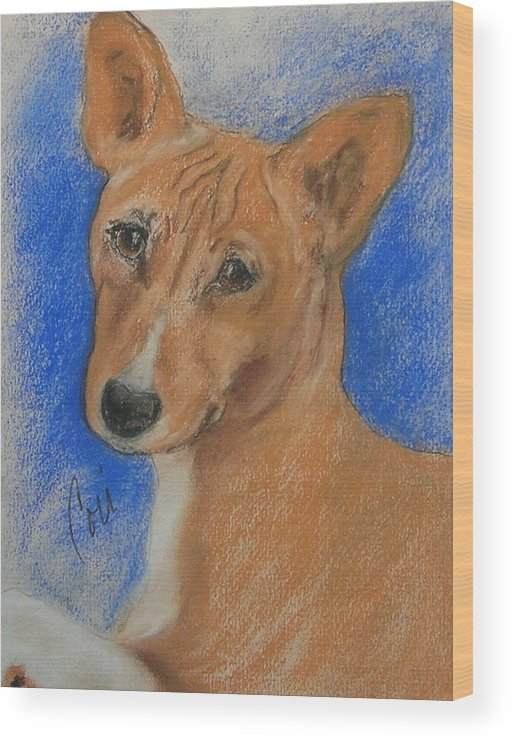 Dog Wood Print featuring the drawing Small And Mighty by Cori Solomon