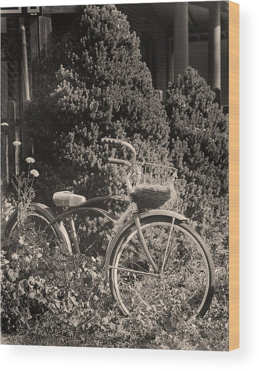 Bike Wood Print featuring the photograph The Bicycle Garden II by Jim Furrer