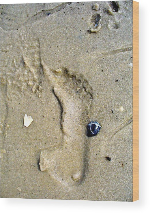 Beach Wood Print featuring the photograph Traces by Mary Sullivan