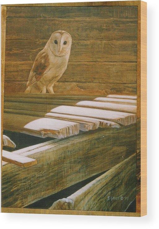 Wildlife Wood Print featuring the painting Barn Owl by Steve Greco