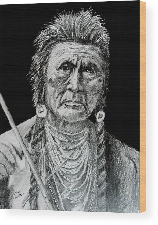Portrait Wood Print featuring the drawing Unknown Indian V by Stan Hamilton