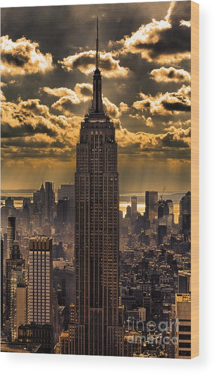 Empire State Building Wood Print featuring the photograph Brilliant But Hazy Manhattan Day by John Farnan