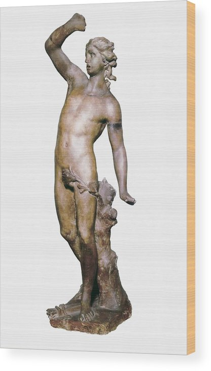 Vertical Wood Print featuring the photograph Canova, Antonio 1757-1822. Apollo. End by Everett