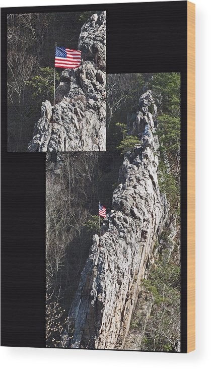 Flag Wood Print featuring the photograph Climb To Great Heights by Elisia Cosentino