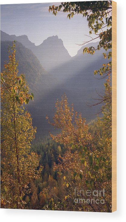 Mountains Wood Print featuring the photograph Autumn At Logan Pass by Richard Rizzo