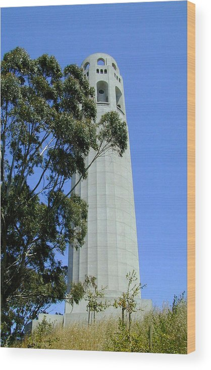 Coit Wood Print featuring the photograph Coit Tower by Douglas Barnett