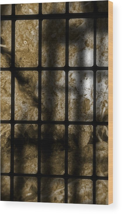 Abstract Wood Print featuring the photograph Death As Shadow by Steve Parrott