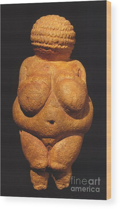 Ancient Wood Print featuring the photograph Venus Of Willendorf by Granger