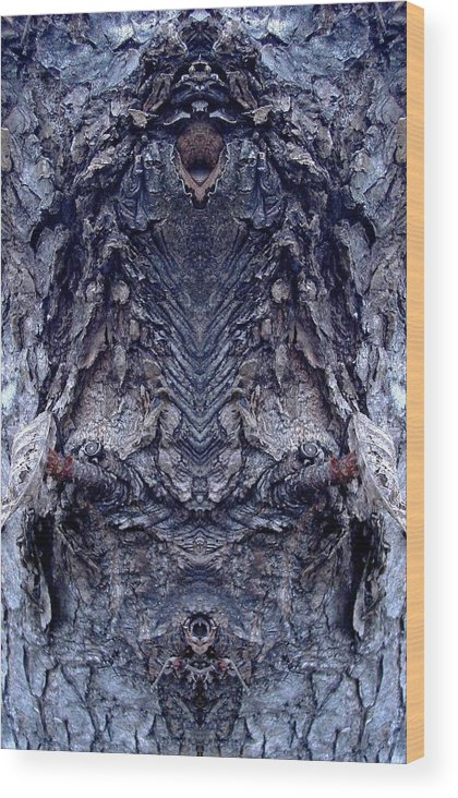 Nature Wood Print featuring the photograph We Live Here by Marilynne Bull