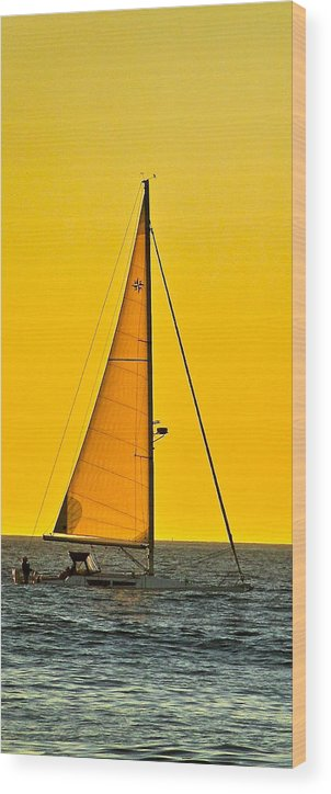 Sailing Wood Print featuring the photograph Sunset Sailing by Liz Vernand