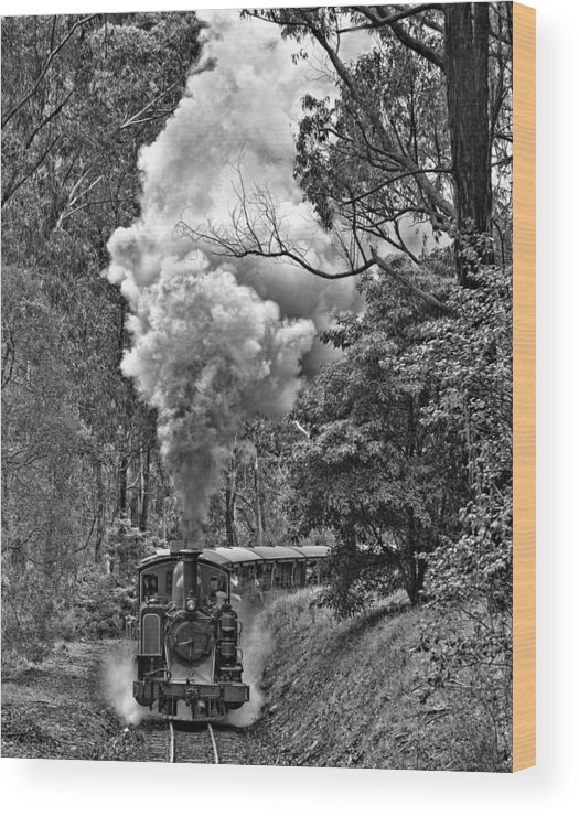 Puffing Billy Wood Print featuring the photograph Puffing Billy by Matt Jones