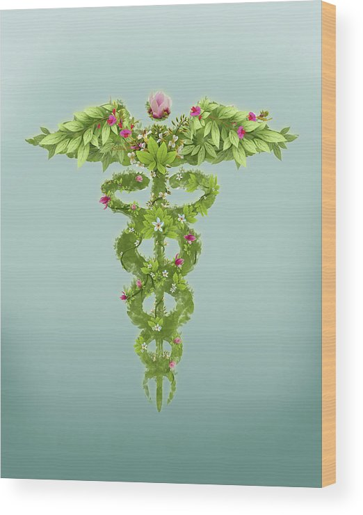 Alternative Medicine Wood Print featuring the photograph Illustration Of Caduceus Symbol by Fanatic Studio / Science Photo Library