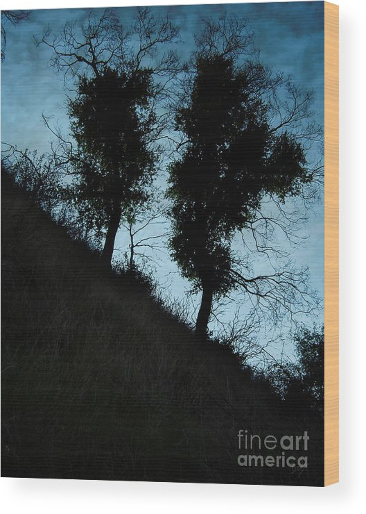 Nature Wood Print featuring the photograph Shadowlands 8 by Peter Awax