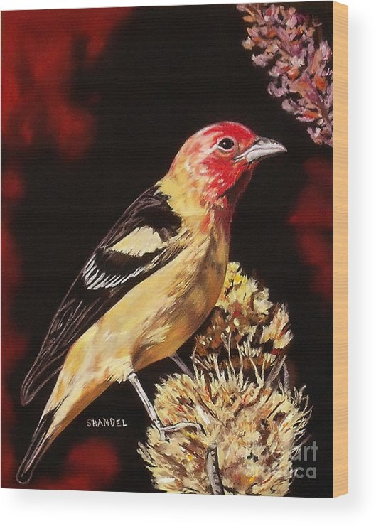 Western Tanager Wood Print featuring the pastel Sunbright Songbird by Shandel Gamer