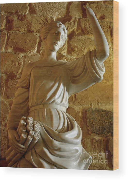 Statue Wood Print featuring the photograph Goddess by Denise Wilkins