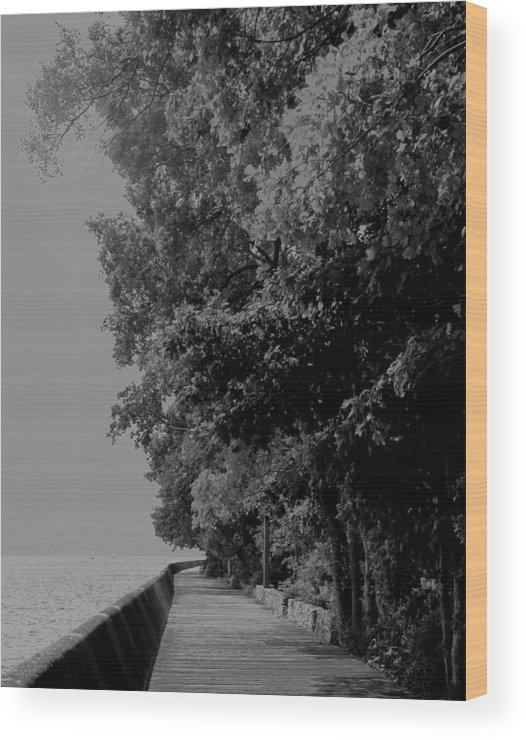 Black And White Wood Print featuring the photograph Boardwalk by Ian MacDonald