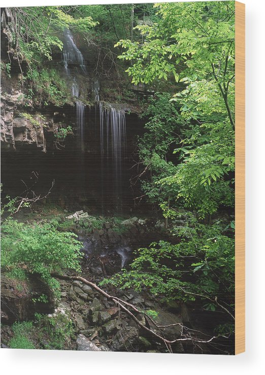 Wood Print featuring the photograph Green-falls by Curtis J Neeley Jr