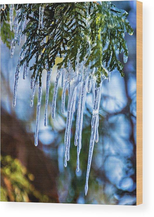 Steve Harrington Wood Print featuring the photograph Light Chimes 4 by Steve Harrington