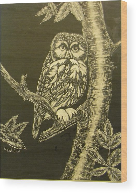 Owl Wood Print featuring the painting Little Saw-whet Sold by Jack Bolin