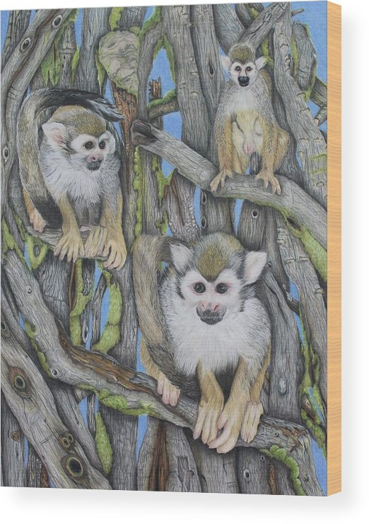 Monkeys Wood Print featuring the drawing Monkeys by Kathleen Smith